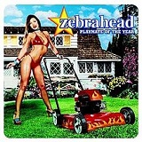 Playmate Of The Year Lyrics Zebrahead