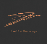 I Want to See Pulaski at Night (EP) Lyrics Andrew Bird