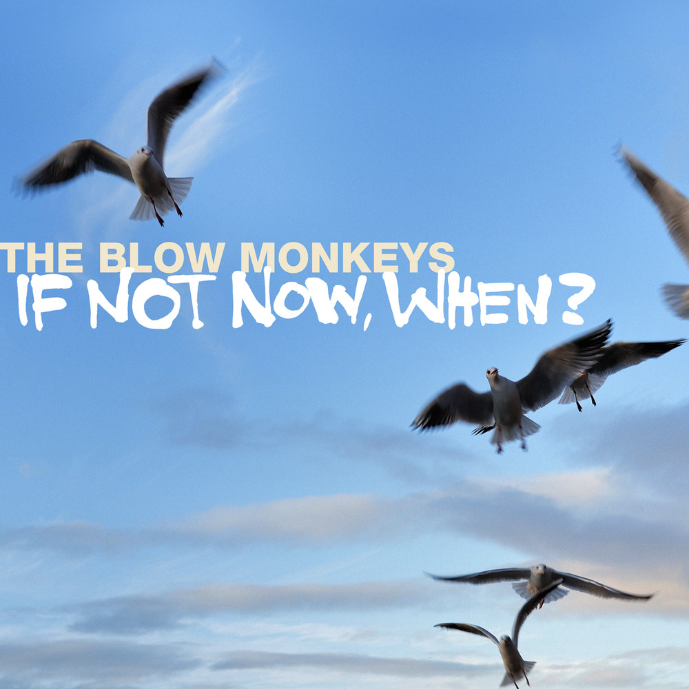 If Not Now, When Lyrics The Blow Monkeys