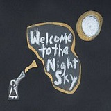 Welcome To The Night Sky Lyrics Wintersleep