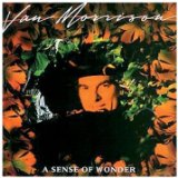 A Sense of Wonder Lyrics Morrison Van