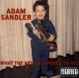 What The Hell Happened To Me? Lyrics Adam Sandler