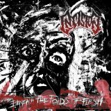Beneath The Folds Of Flesh Lyrics Insision