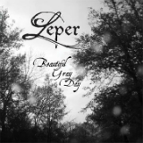 Beautiful Gray Day Lyrics Leper