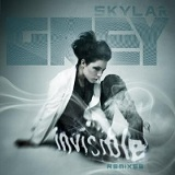 Invisible (Single) Lyrics Skylar Grey
