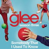 Somebody That I Used to Know (Single) Lyrics Glee Cast