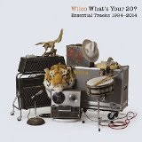 What's Your 20? Essential Tracks Lyrics Wilco