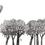 Here Comes The Rain - EP Lyrics The Ladybug Transistor